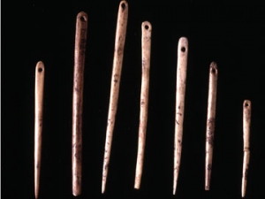 A set of bone needles from the Cave of Courbet in the Aveyron Valley, near Toulouse, France. Believed to be over 13,000 years old.