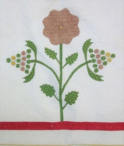 Detail of an appliqué and embroidered quilt, 1840's.